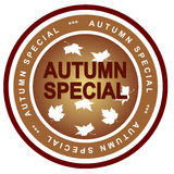 Autumn special Royalty Free Stock Photos