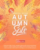 Autumn special offer banner. With autumn leaves and floral elements in fall colors.Sale season card perfect for prints, flyers,banners, promotion,special offer vector illustration