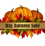 Autumn special sale poster isolated Royalty Free Stock Photos