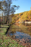 Autumn Splendor. Scenic fall day along the bank or a small river royalty free stock photography