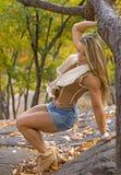 Autumn Splendor in einem Zauber, Buff Package Lizenzfreies Stockfoto