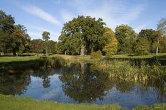 Autumn splendour Royalty Free Stock Photography