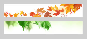 Autumn and spring banner Royalty Free Stock Photos