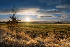 Autumn or spring rural meadow with sun. Stock Photos