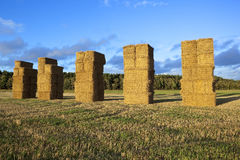 Autumn square bales Stock Photography