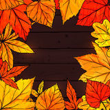 Autumn square frame with hand drawn golden leaves Stock Photography