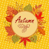 Autumn square postcard. Greeting card with a frame autumn leaves Royalty Free Stock Photos