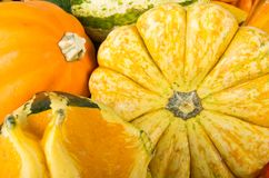 Autumn squash Royalty Free Stock Images