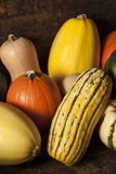 Autumn Squash clasificado orgánico Imagen de archivo libre de regalías