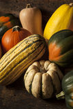 Autumn Squash sortido orgânico Imagem de Stock