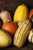 Autumn Squash sortido orgânico Imagem de Stock Royalty Free