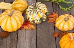 Autumn Squash Royalty Free Stock Images