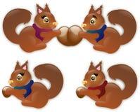 Autumn squirrels Stock Image