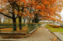 Autumn in St. Petersburg Stock Photos