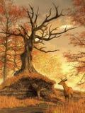 Autumn Stag ilustración del vector