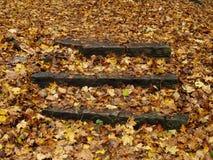 Autumn staircase, Toronto, Ontario, Canada Royalty Free Stock Photos