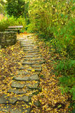 Autumn stairs with autumn leaves. Stairs with foliage in the forest.Autumn season royalty free stock images