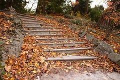 Autumn stairs Stock Image