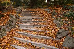 Autumn stairs Royalty Free Stock Image