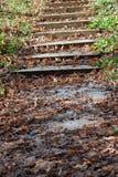 Autumn on stairs Royalty Free Stock Photos
