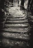 Autumn stairway Stock Photo