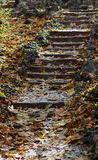 Autumn stairway Royalty Free Stock Image