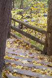 Autumn steps. Wooden steps leading down a park trail in autumn Stock Photo