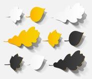 Autumn sticker realistic object shadow leaf set Royalty Free Stock Photo