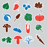 Autumn stickers  Stock Image