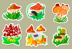 Autumn stickers Stock Photography