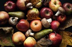 Autumn stil-life Stock Photography