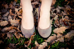 Autumn Stilettos Stock Foto's