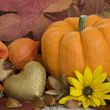 Autumn Still l ife stock image