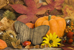 Autumn Still l ife Royalty Free Stock Image
