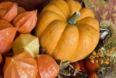 Autumn Still l ife Stock Photos