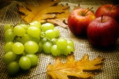 Autumn still-life Royalty Free Stock Image