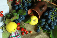 Autumn still life. Still life from yayvy, wild rose, vine and other fruit on an artistic canvas Stock Photo