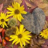 Autumn still life Royalty Free Stock Image