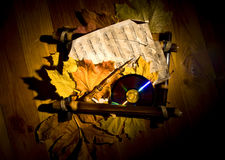 Autumn still life. With abscissed leaves Royalty Free Stock Photography