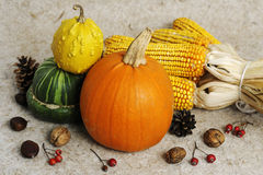 Autumn still life Royalty Free Stock Image