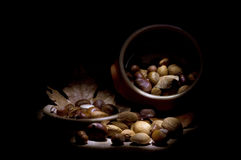 Autumn still life. Still life of chestnuts, almonds, hazelnuts and walnuts Stock Photos