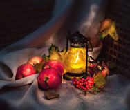 Autumn still life. With apples and lamp, light painting royalty free stock images