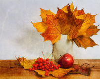 Autumn still life. Of yellow leaves, ripe mountain ash with apple Royalty Free Stock Images