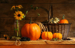 Autumn still life stock image