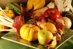 Autumn still-life Royalty Free Stock Photography