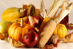 Autumn still-life Stock Photography