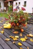 Autumn still life. Aa autumn still life on the table Royalty Free Stock Image