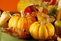 Autumn still-life Stock Photos