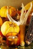 Autumn still-life Stock Images