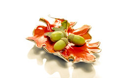 Autumn still life with acorns Royalty Free Stock Photos